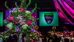 Distinguished Alumni Awards dazzles Thumbnail